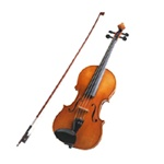 Violin Student Musical Instrument Rental